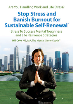 Audiobook Stop Stress and Banish Burnout for Sustainable Self-Renewal